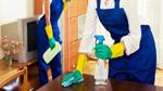 نظافت منزل در بهارستان